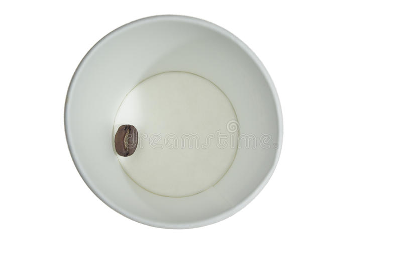 Paper cup with coffee seed royalty free stock photo