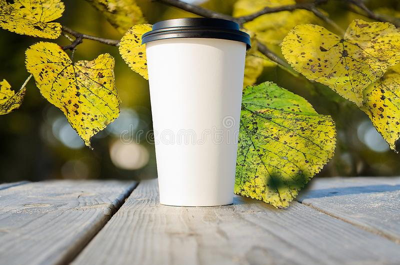 Paper cup with coffee is standing on the wooden table inn on the autumn park royalty free stock photography