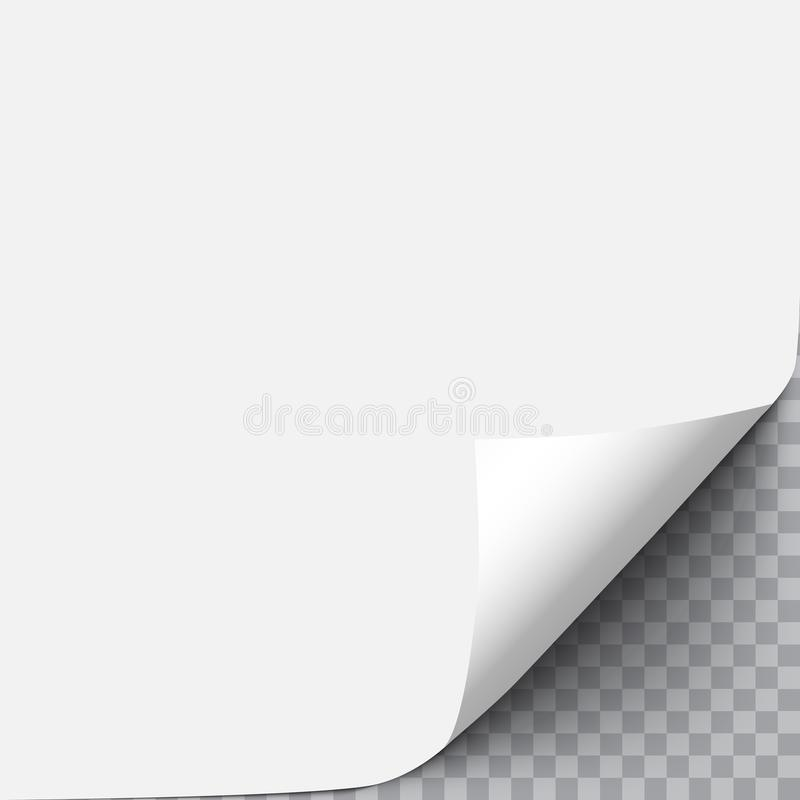 Paper with curl corner royalty free illustration