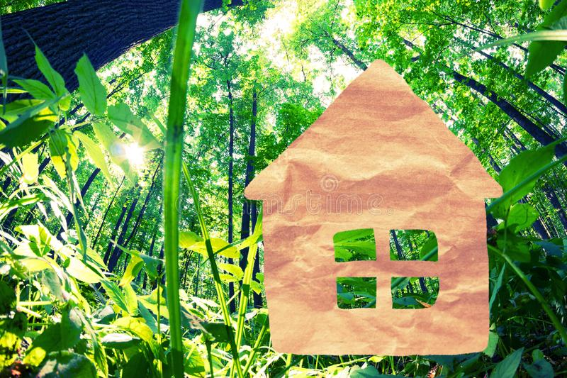 Paper cut of eco on green grass. Green house concept royalty free stock photography