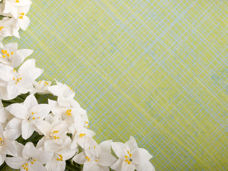 Paper flowers. Closeup shot of spring paper flowers on green background royalty free stock images