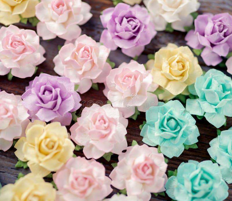 paper foto f?r h?rliga blommor mycket royaltyfri fotografi