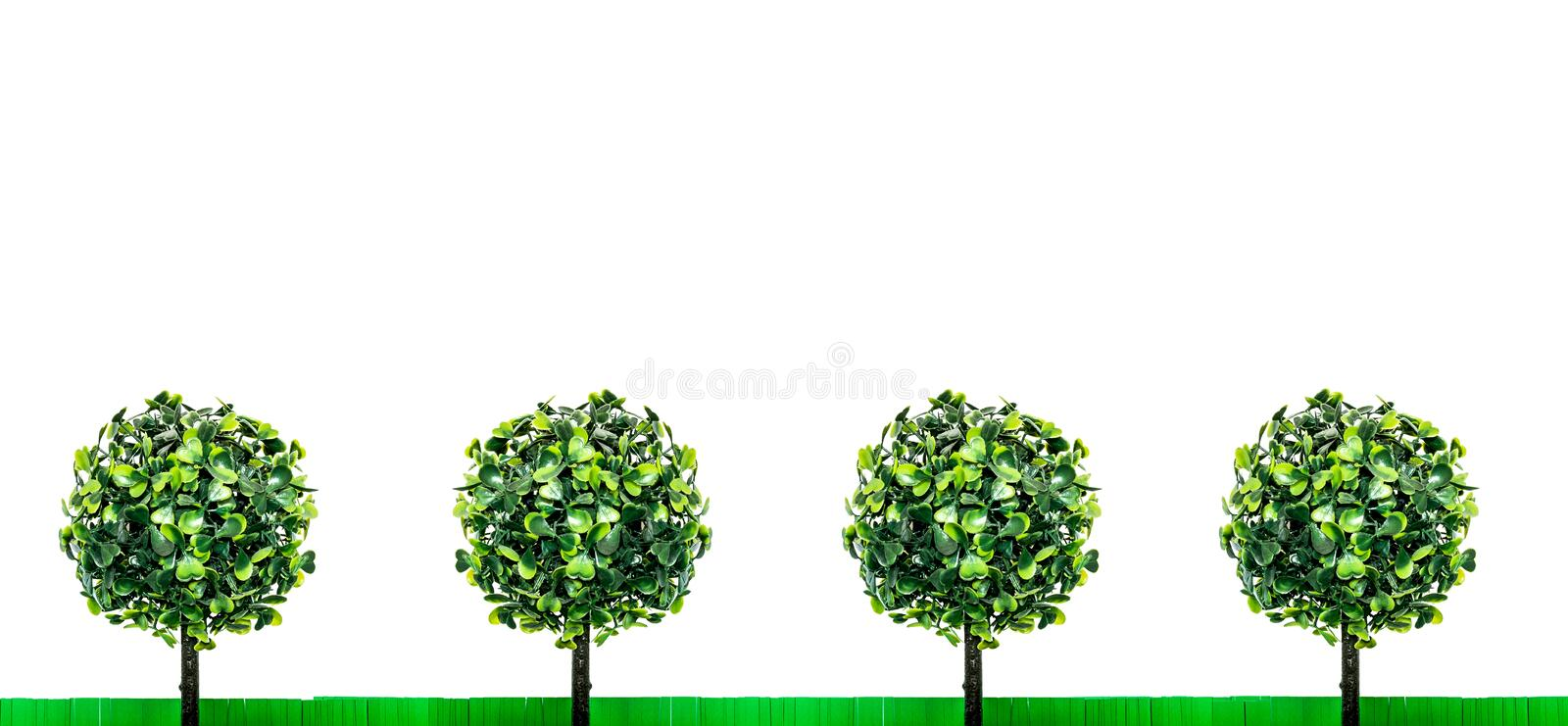 Paper green grass and toy trees with green leaves, standing exactly in a row, isolated on a white background. Fun summer landscape composition on the theme of royalty free stock image