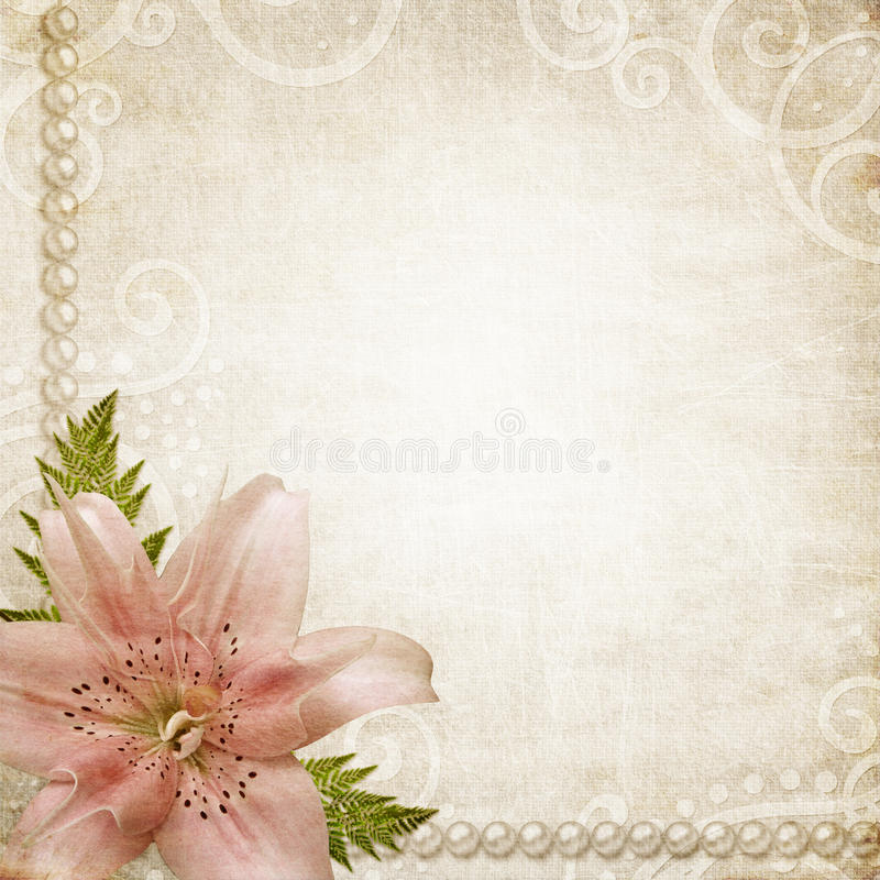 Paper grunge background with pink lily. Romantic background witn grunge paper, pearls and pink lily flower royalty free stock image