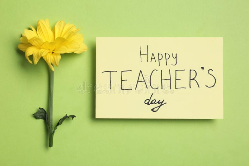 Paper with inscription HAPPY TEACHER`S DAY and flower on light green background royalty free stock photos
