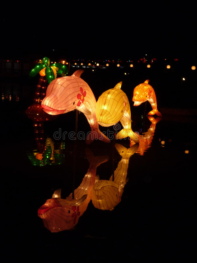 Paper Lantern Dolphins (Chinese New Year) royalty free stock image