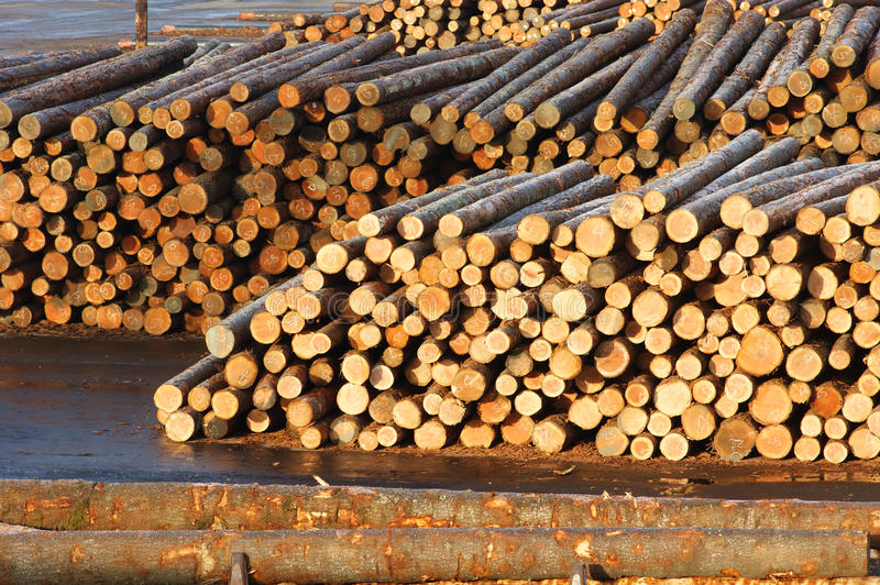 Download Paper Mill 2 Logs Waiting For Lumber Processing Stock Photo - Image: 18450648