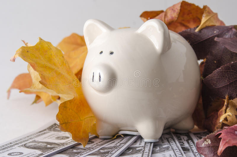 Paper Money and a Piggy Bank in the fall royalty free stock images