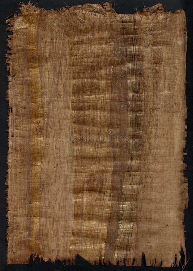 paper papyrus fotografering för bildbyråer