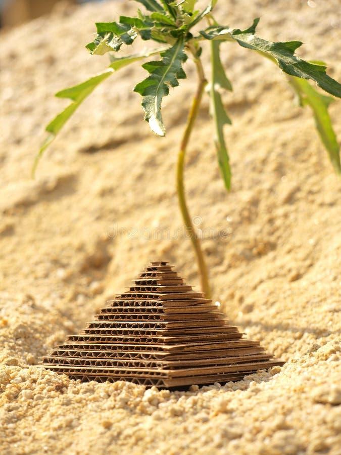 paper pyramid royaltyfri bild