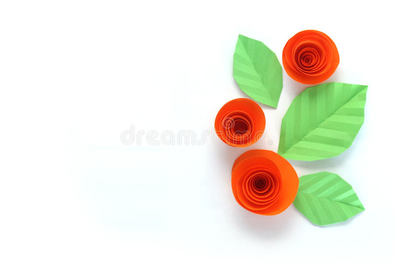 Paper roses royalty free stock photo