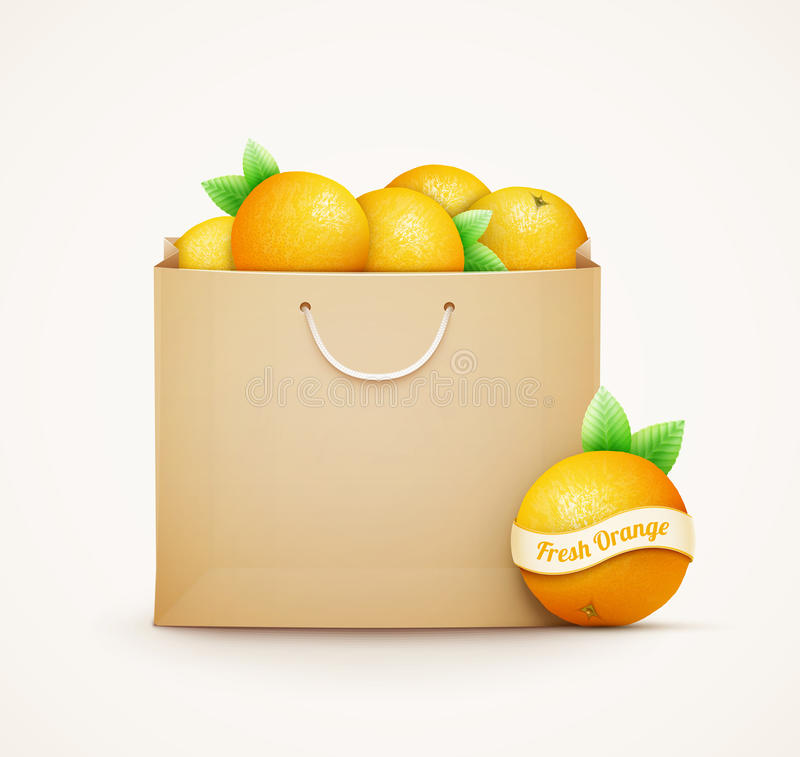 Paper shopping bag with oranges royalty free illustration