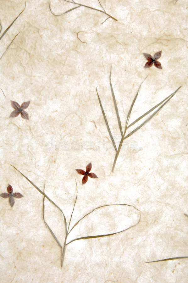 Download Paper Texture Royalty Free Stock Photography - Image: 4971197