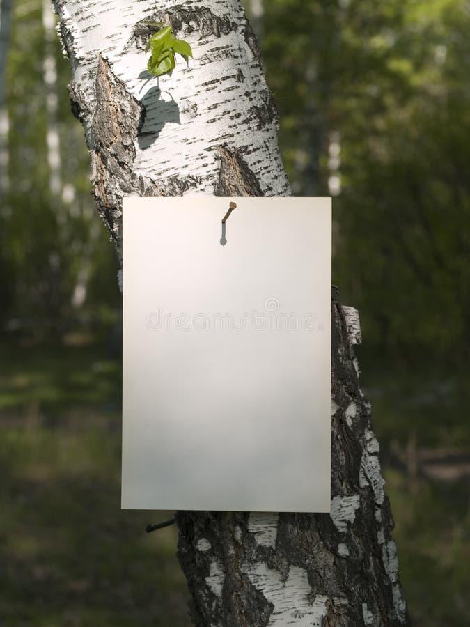 Paper_tree stockbilder