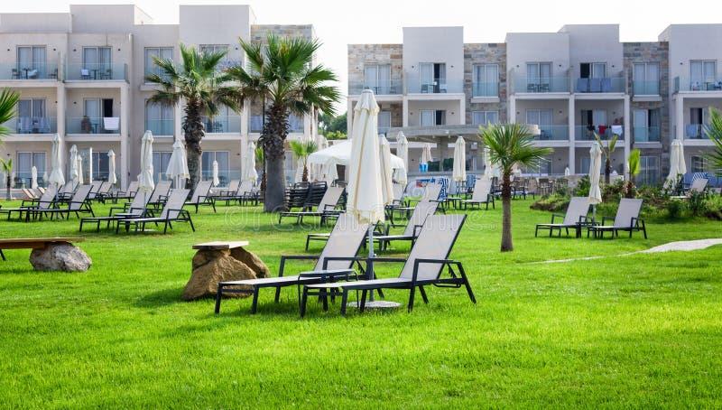 Paphos Cypern - Juli 20, 2017: Palm Beach med tomma sunbeds mot amforahotell & Suitel Ställ in på den idylliska beachfront locati royaltyfri bild