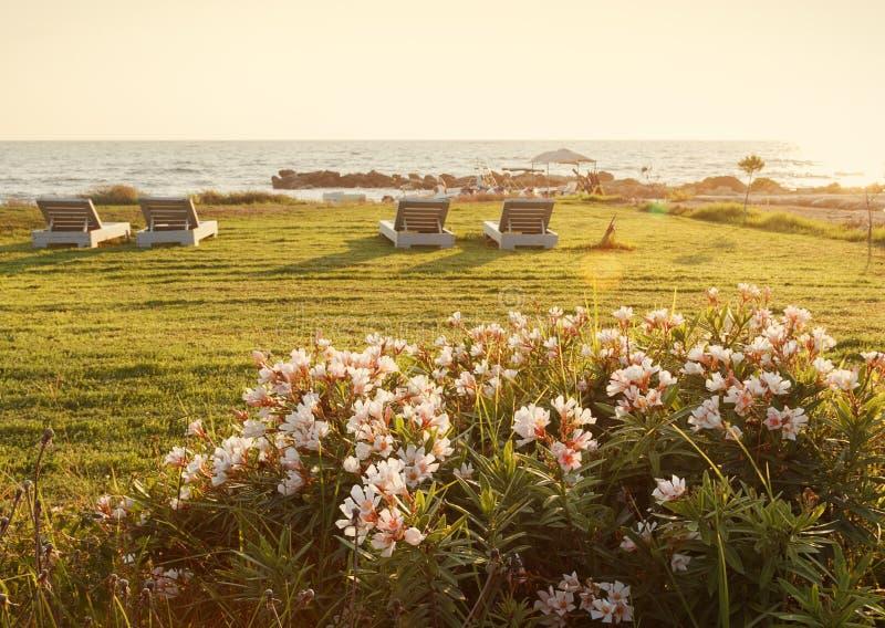 Paphos plaża piękny zachód słońca obraz royalty free