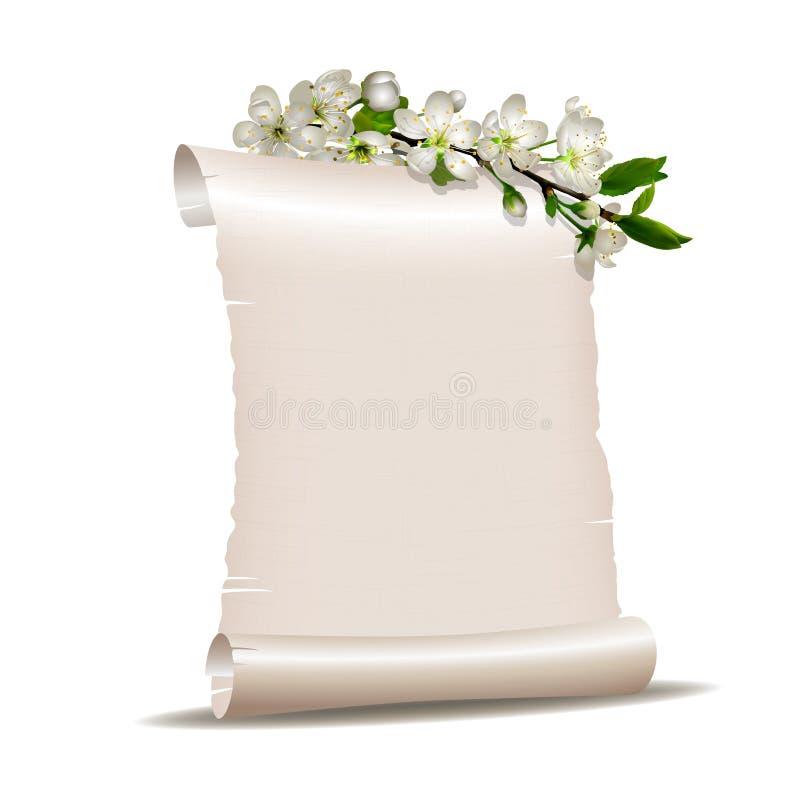Papier blanc de rouleau avec la branche se développante de cerise illustration de vecteur