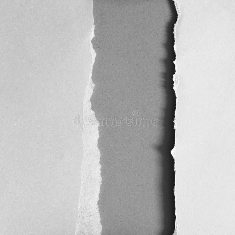 Papier déchiré de déchirure photo libre de droits