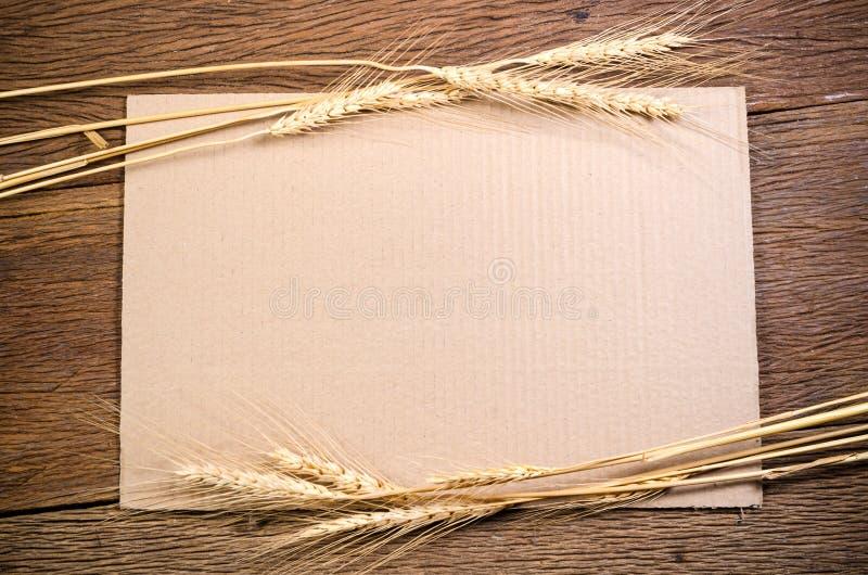 Papier de carton avec le grain d'orge sur la table en bois photographie stock libre de droits