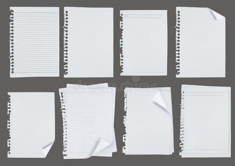 Papier de note blanc au-dessus de fond gris images libres de droits