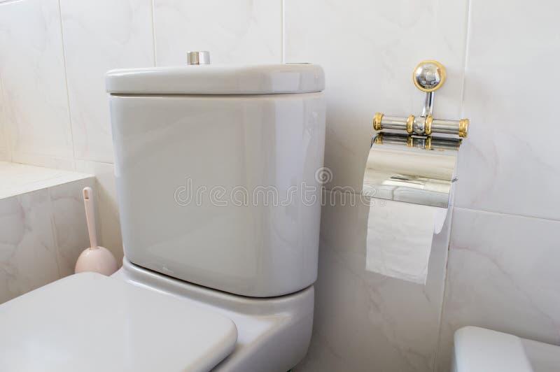 Gris de toilette et papier hygiénique photographie stock