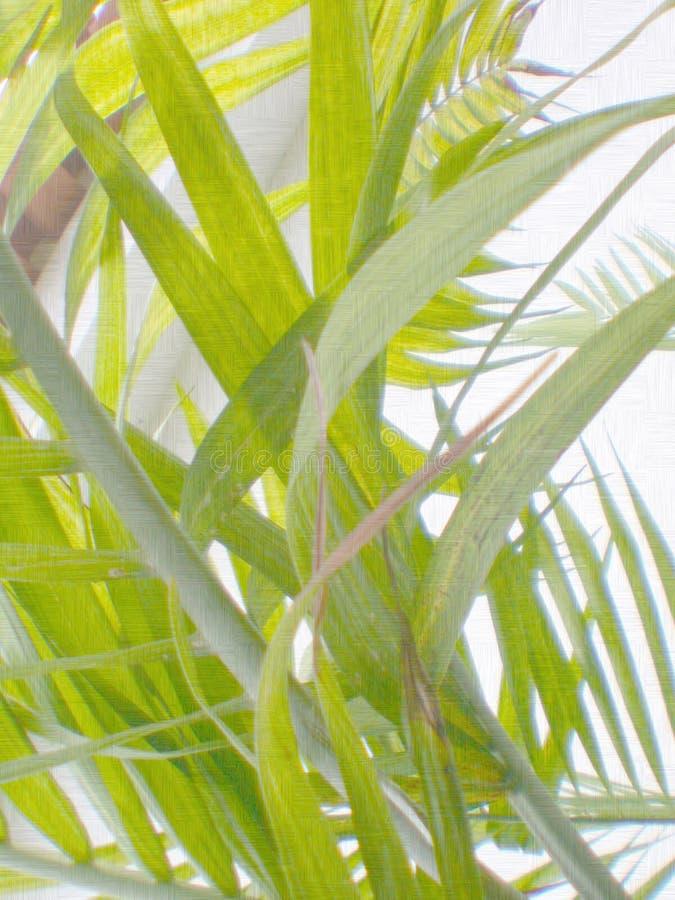 Papier normal de fleur, texture, abstrait, photographie stock libre de droits