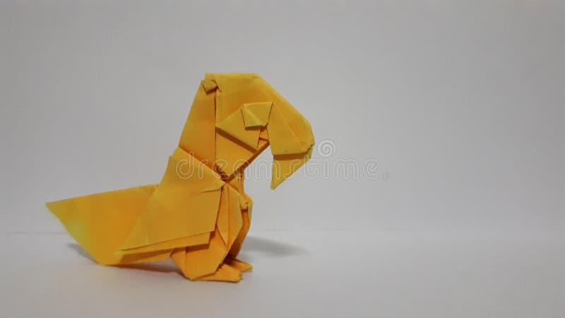 Papier orange de perroquet image libre de droits