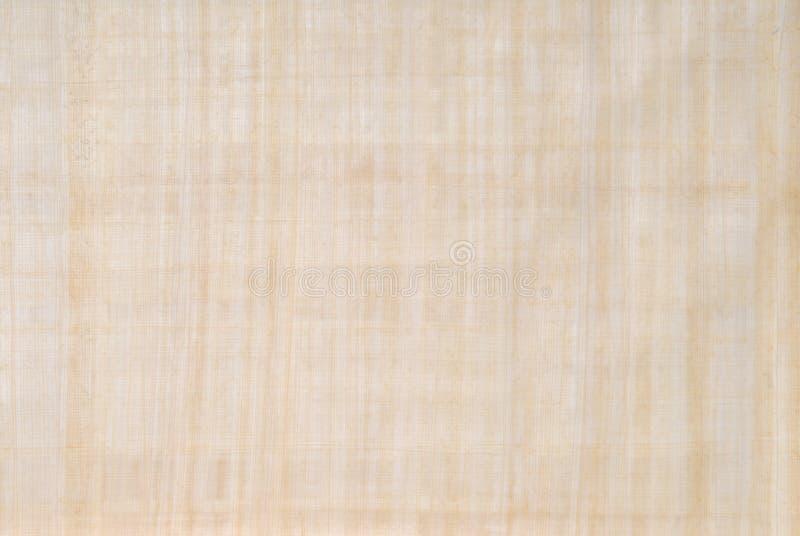 papier papirus ilustracja wektor
