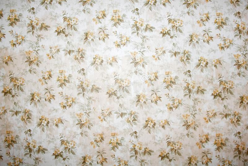 Papier peint de cru avec le beau fond floral de modèle photos libres de droits