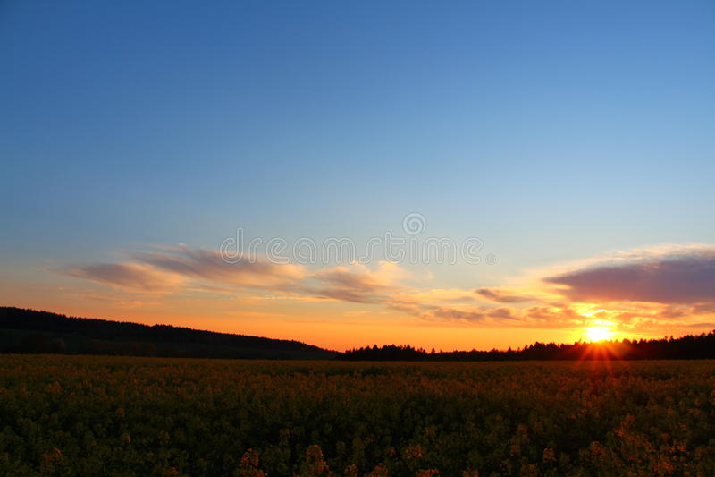 Papier peint de lever de soleil image stock