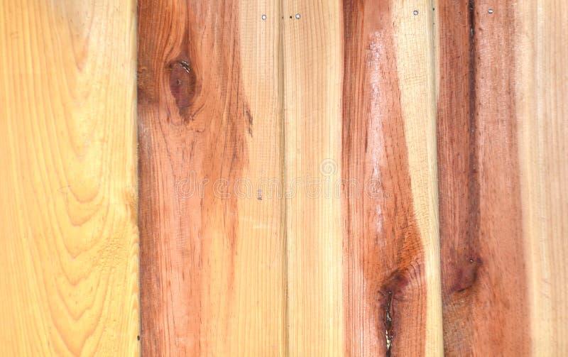 Papier peint en bois photographie stock libre de droits