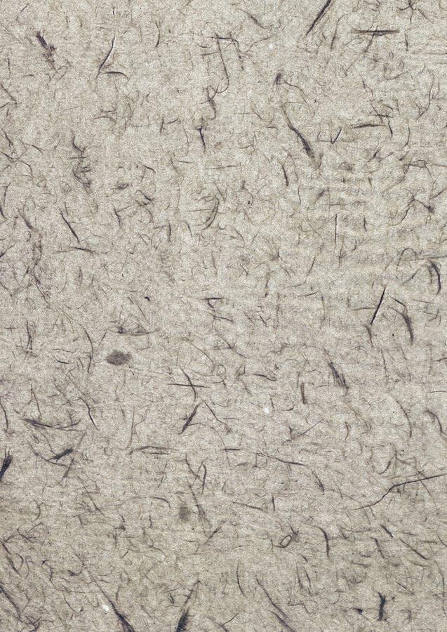papier przetwarzająca tekstura fotografia royalty free