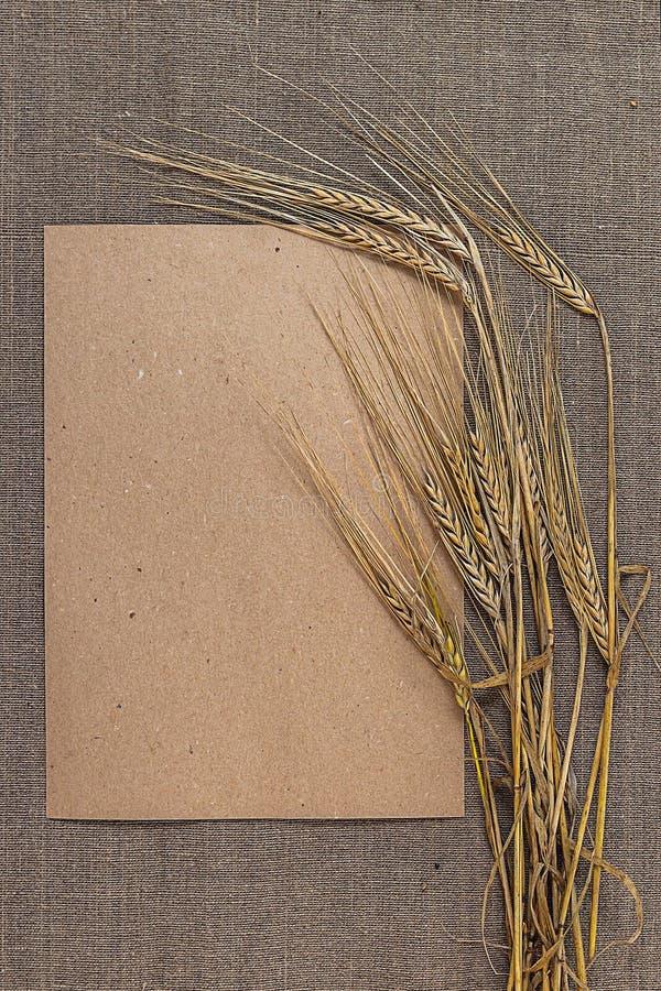 Papier vide avec des épillets de blé photographie stock libre de droits