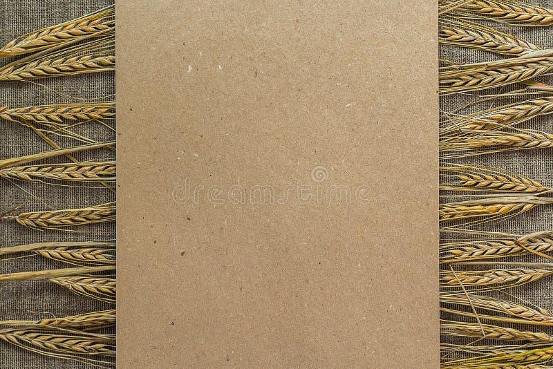 Papier vide avec des épillets de blé images stock