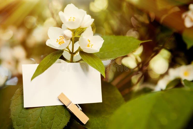 Papieranmerkung gehakt auf Blatt der Blume lizenzfreies stockbild