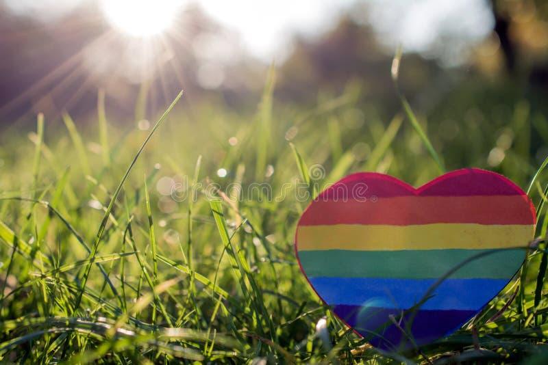 Papierherz gemalt in der Regenbogenfarbe LGBT im Gras stockbild