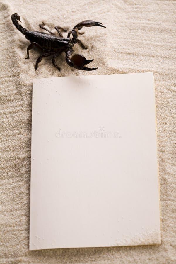 Papierhintergrund und Skorpion stockfotografie