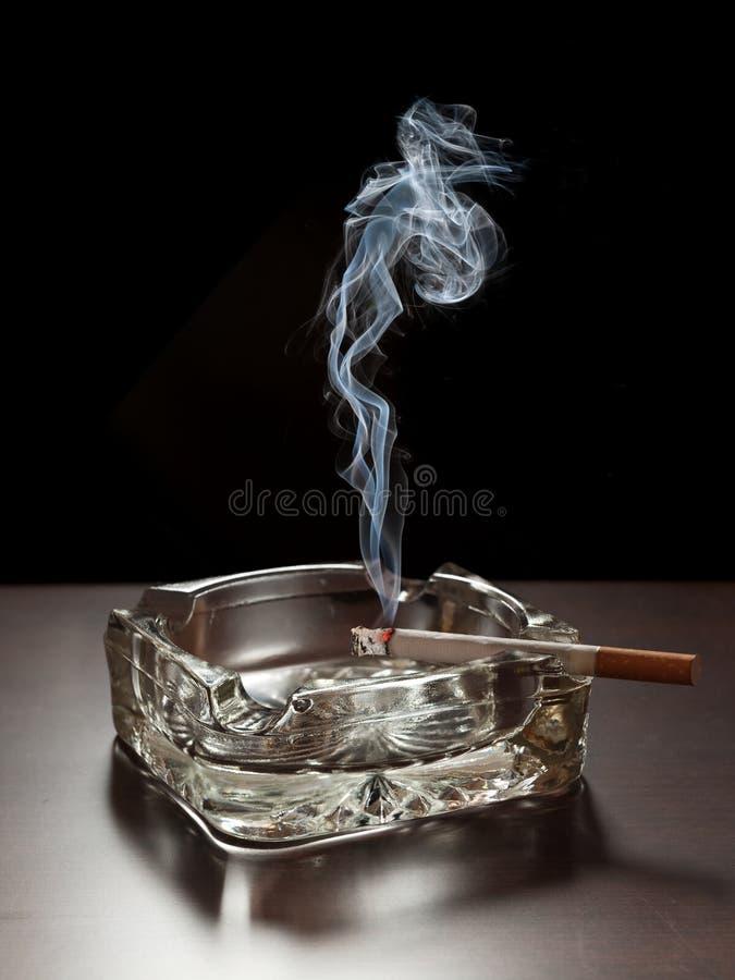 papieros zdjęcia royalty free