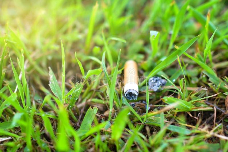 Papieros na trawie zrzuconej na ziemi out zdjęcie stock