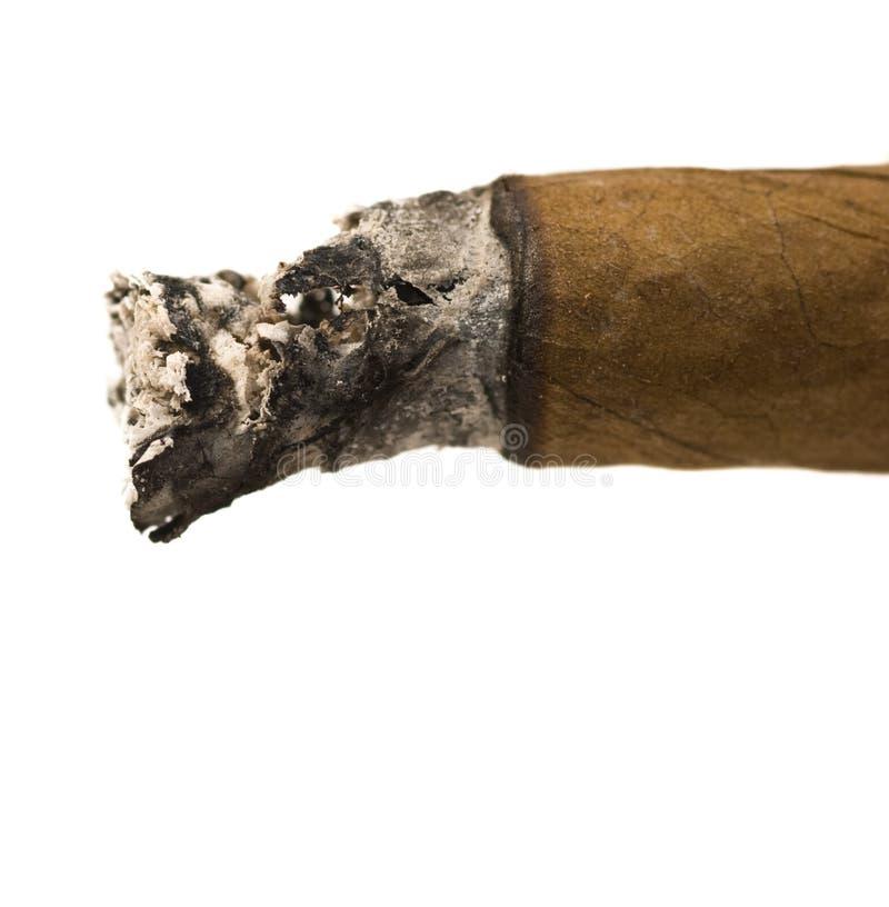 papierosa zdjęcia royalty free