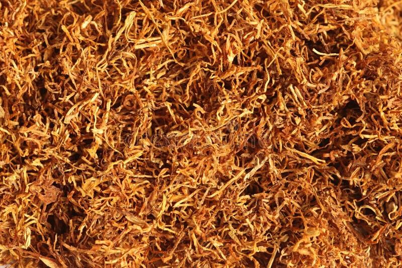 Download Papierosy Zamykają Tytoniu Tytoń Zdjęcie Stock - Obraz złożonej z farm, macro: 13336766