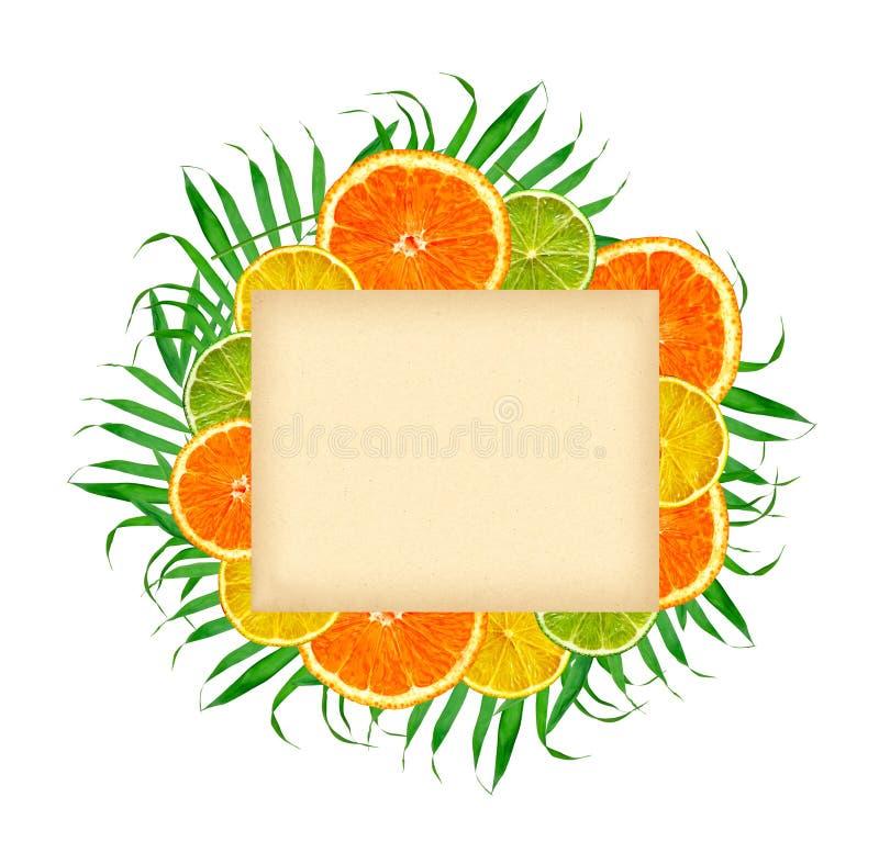 Papierowa karta na cytrus owoc: pomarańcze, cytryna, wapno na zielonej paproci l fotografia stock