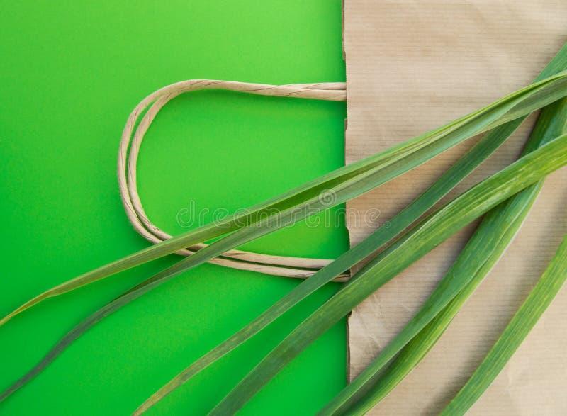 Papierowa torby na zakupy eco odgórnego widoku płaska pozycja z zielnymi roślinami na zielonym tle, zero jałowych ekologii pojęci fotografia royalty free