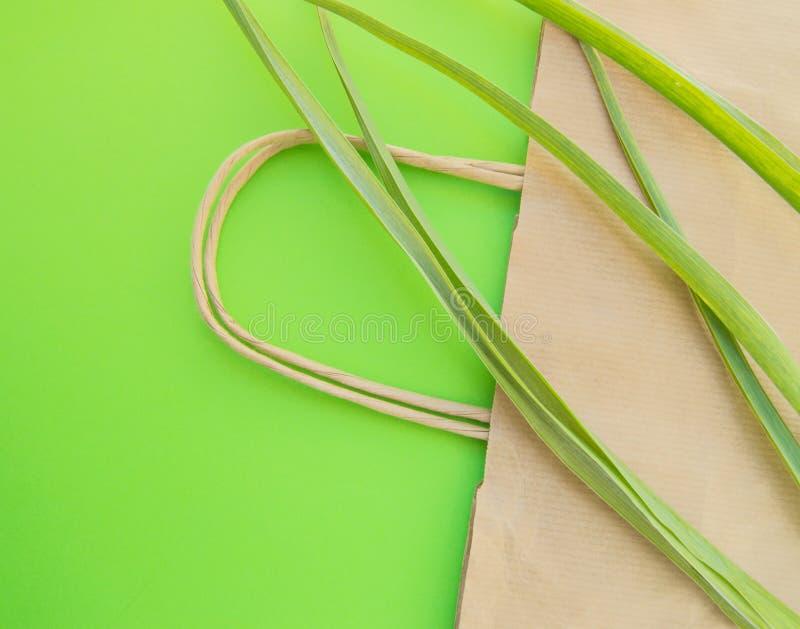 Papierowa torby na zakupy eco odg?rnego widoku p?aska pozycja z zielnymi ro?linami na zielonym tle, zero ja?owych ekologii poj?ci obrazy royalty free