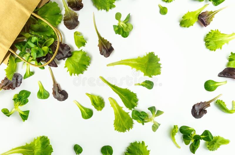 Papierowej torby upadku zieleni obfitolistni warzywa sałatkowi na bielu zdjęcia royalty free
