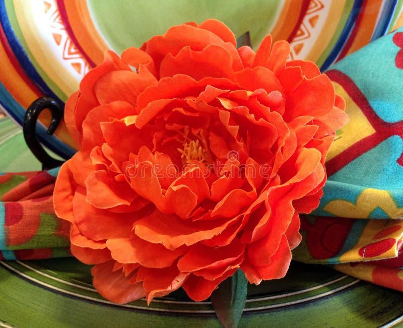 Papierowy kwiat dla Cinco de Mayo obrazy royalty free