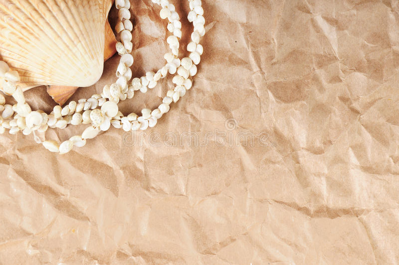 papierowy seashell zdjęcia royalty free