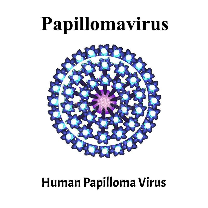 papillomatosis transmitted
