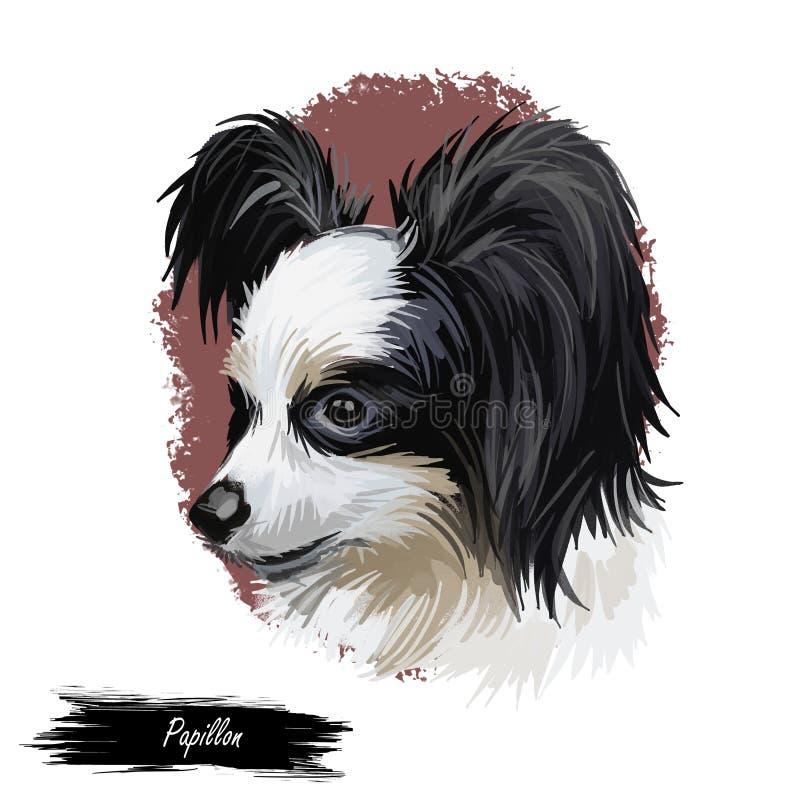 Papillon大陆玩具西班牙猎狗品种画象水彩,数字式艺术 膝部宠物,家畜被隔绝的枪口  库存例证