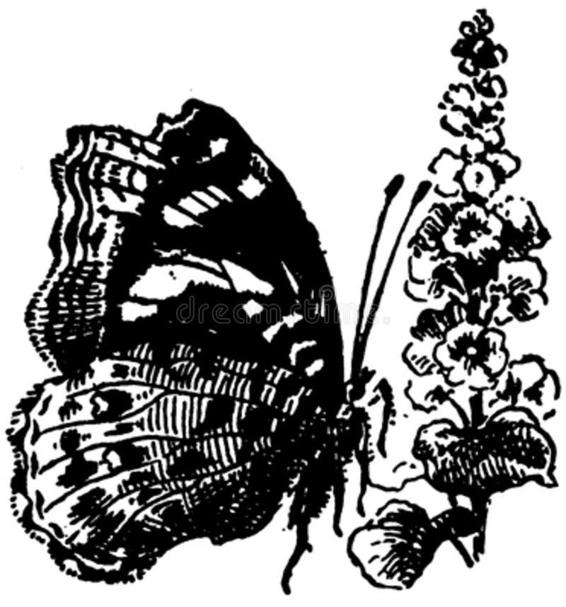 Papillon-012 Free Public Domain Cc0 Image